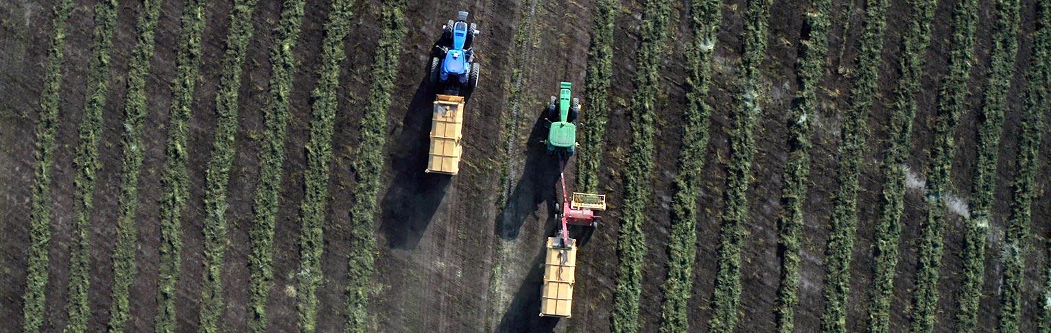 Agricultural Flyover